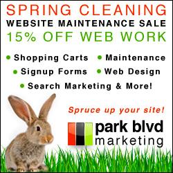 San Diego Web Design Sale